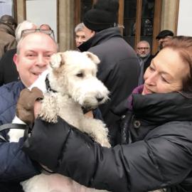 Milú, perro oficial de Tintín